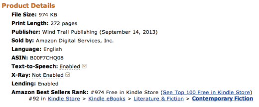 Cemetery Tours Ranks #92 on the Kindle Store's Best Sellers in Contemporary Fiction